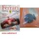 FERRARI F1 2004  DE AGOSTINI VOLANO MOTORE + PROLUNGA ALBERO   art. 04006