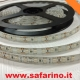 LED STRISCIA 5 M. BIANCHI 12V. art. TK13004
